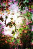 Double exposition des objets floraux Image libre de droits