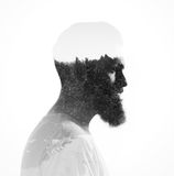 Double exposure of bearded guy and pinewood Royalty Free Stock Images