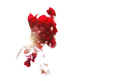 Double exposure of bearded guy and red flowers Royalty Free Stock Photos