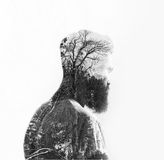 Double exposure of a bearded guy and tree Stock Image