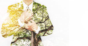 Double Exposure Businessman in Suit with Big Tree with Bright Sunlight and copy space Royalty Free Stock Photos