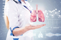 Double Exposure, Doctor with stethoscope and lungs on the hands . gray background. Royalty Free Stock Image