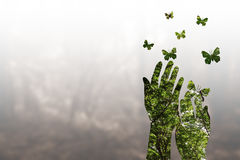 Double exposure effects on silhouette hand nature background. Double exposure effects on silhouette hand combined with photograph of green forest landscape Stock Photos