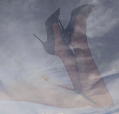 Double exposure female legs and high heels with cloudy sky background Stock Photo