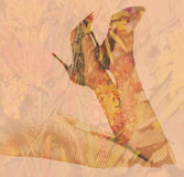 Double exposure female legs and high heels with flower background Stock Images