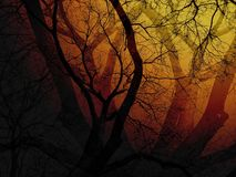 Dead trees in yellow and red light - Concepts of Halloween, Friday the 13th, mystery. Double exposure with flare light. Dark area on the bottom-left corner is Royalty Free Stock Image