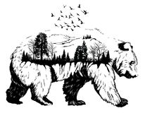 Double exposure, Hand drawn bear. Vector Double exposure, Hand drawn bear for your design, wildlife concept Stock Photography