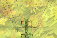 Double exposure high voltage power lines with flower background Royalty Free Stock Photos