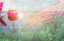 Double exposure image of vegetable and laboratory. Double exposure image of vegetable bed in background and modern laboratory Stock Photo