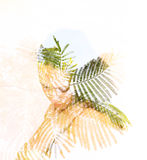 Double exposure of leaves in the beautiful young woman. Stock Photo