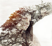 Double exposure magic portrait of sensual beautiful woman and tr. Cute beautiful woman with pure skin and strong healthy bright hair Royalty Free Stock Photography