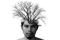 Double exposure photo of stressful man with silhouette of tree b. Ranch on white Royalty Free Stock Photo