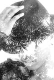 Double exposure portrait. Of woman with hat combined with photograph of tree Stock Photo