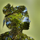 Double exposure portrait of young woman and forest. Double exposure portrait of young woman and green forest royalty free stock photos