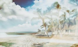 Double exposure of retro style background on which there is the beach with palm trees. It`s in tropical resort in Cuba stock photo