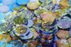 Double exposure of Savings, piles of coins arranged tree background, business environment. Idea, shallow focus royalty free stock photos