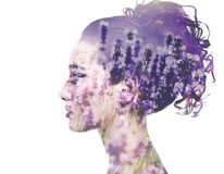 Double exposure woman. Beautiful double exposure woman profile with lavender field Stock Images