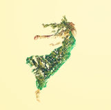 Double exposure of woman flying with leaves. Double exposure of young woman flying with abstract leaves Stock Photography