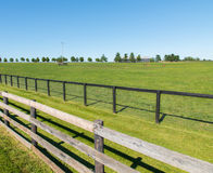 Double fence at horse farm. Stock Photography