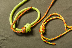 Double fishermans knot. Royalty Free Stock Image