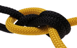 Double flat knot. black and yellow ropes. Stock Photos