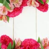 Double flower border on white wood Royalty Free Stock Photos