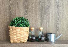 Double glass jar with coffee bean inside with fake plants Stock Photos