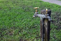 Double headed tap on a wooden post stock image