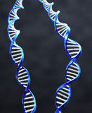 Double Helix Royalty Free Stock Photography