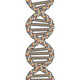 Double Helix with clipping path. Rasterized Original Vector Artwork Royalty Free Stock Image
