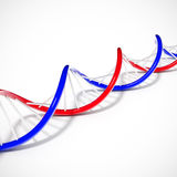 Double helix dna. String lying on a white background Royalty Free Stock Photos