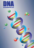 Double Helix DNA in Color Vector Illustration Royalty Free Stock Image
