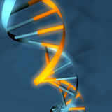Double Helix Microbiology. A 3D model of a DNA strain (double helix royalty free illustration