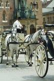 Double horse cab Royalty Free Stock Photos