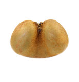 Double kiwi fruit Royalty Free Stock Photo