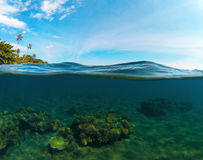 Double landscape with sea and sky. Split photo with tropical island and underwater coral reef. Stock Photo