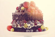 Double layer chocolate mud cake with whipped cream and fruit. Stock Photo