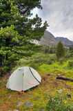 Double lightweight sports tent under a large Siberian pine Royalty Free Stock Image