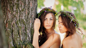 Double portrait Royalty Free Stock Images