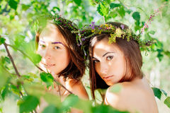Double portrait Royalty Free Stock Image