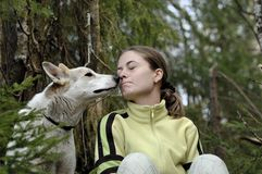 Double portrait of the beauty girl and husky dog Stock Photo