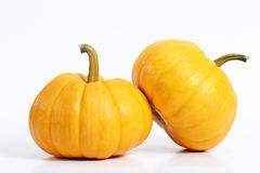 Double Pumpkin. Pumpkins isolated with white background Royalty Free Stock Photos