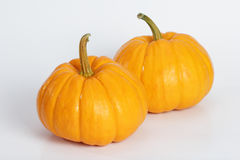 Double Pumpkin. Pumpkin on the white background do holloween object Royalty Free Stock Photography