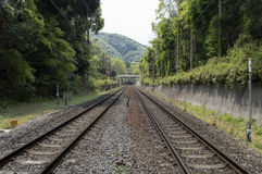 Double rail track Stock Photography