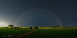 Double rainbow above ricefield Stock Image