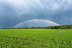 Double rainbow in the blue cloudy dramatic sky over green field and a forest illuminated by the sun in the country side Stock Image