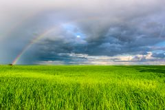Double rainbow in the blue cloudy dramatic sky over green field and a forest illuminated by the sun in the country side Stock Photography