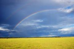 Double rainbow, Tanzania. Double rainbow over bright yellow grassland after thunderstorm,  Manyara lake national park, Tanzania, Africa Stock Photo