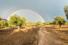 Double rainbow over an organic olive farm, Spain stock photography