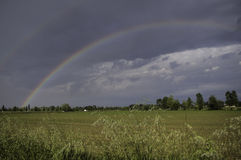 Double Rainbow. Over trees and bushes during a storm with the sun royalty free stock photography